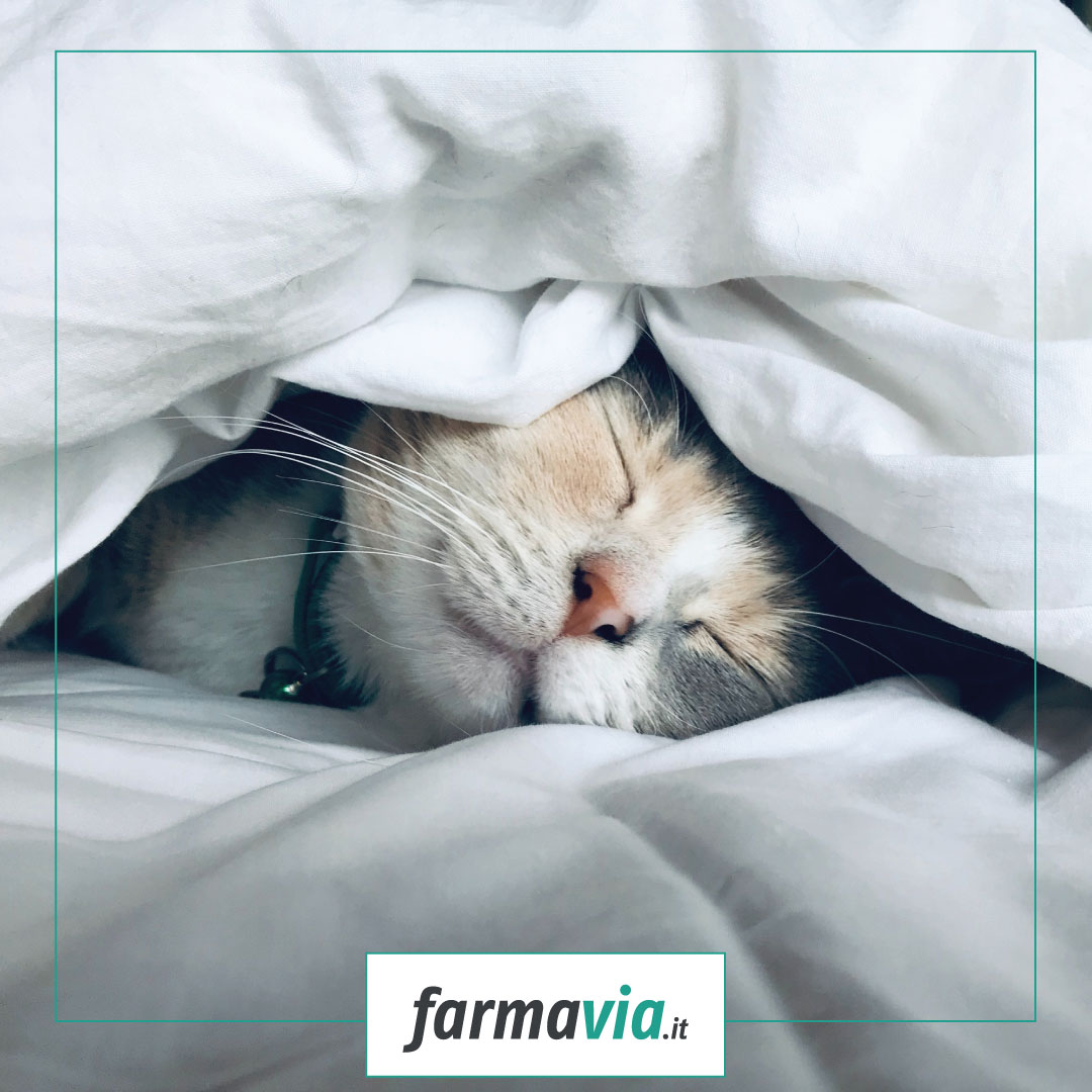 Dormire bene evita il raffreddore, vero o falso?